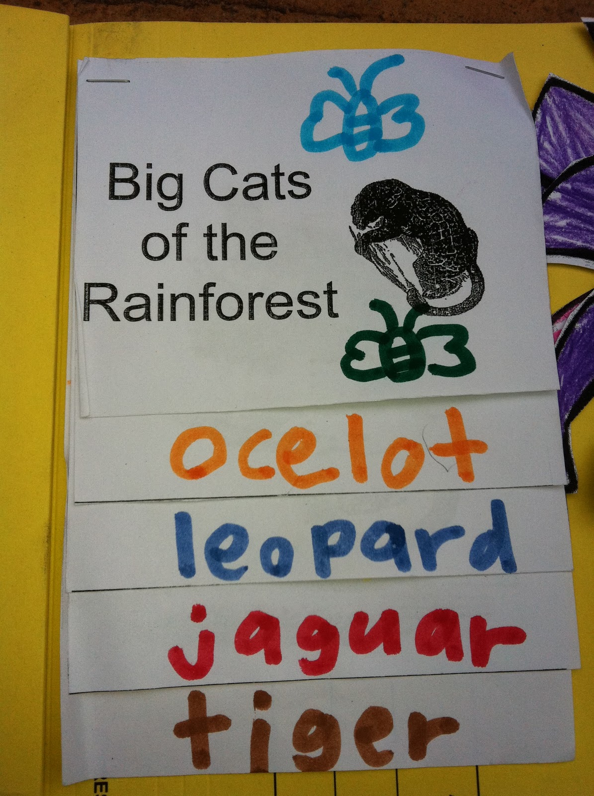 Little Beans: The Great Kapok Tree Lapbook Project
