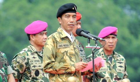DPR: Presiden Tak Bisa Kerahkan TNI Demi Seorang Ahok