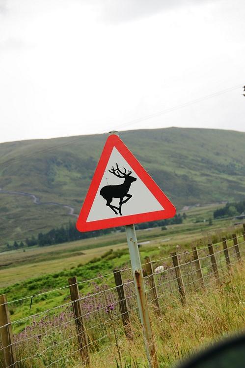 Scottish Highlands!