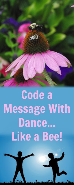 Dance in Code Like a Bee