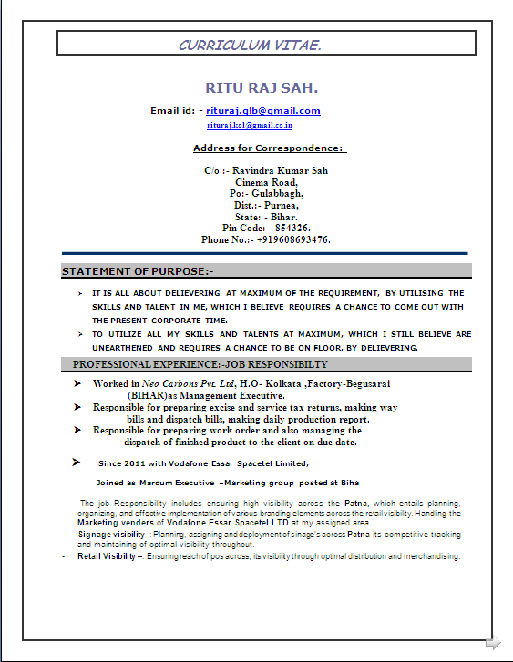 beautyful resume sample  mba  marketing  u0026 finance  with 4