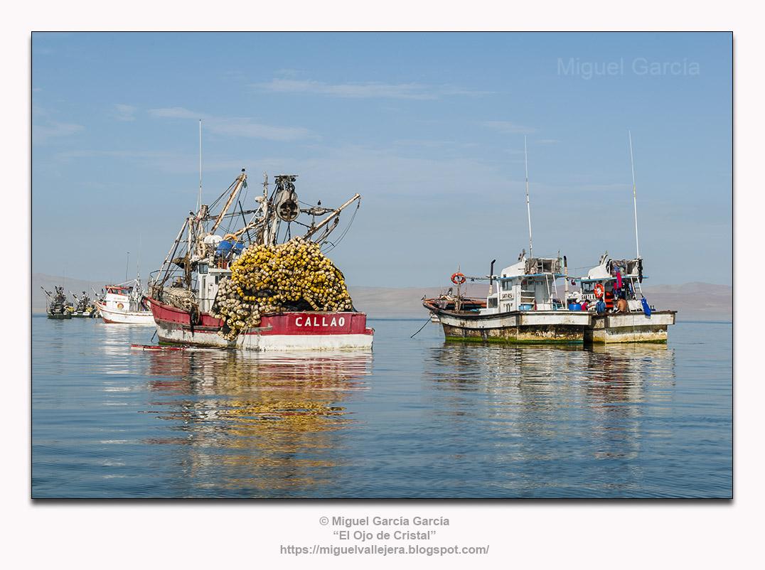 Pesqueros fondeados en la bahía de Paracas, Pisco (Perú).