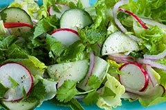 Thai Cucumber and Radish Salad w/ Cilantro and Mint
