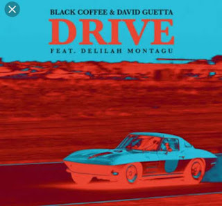 Black Coffee & David Guetta Feat. Delilah Montagu - Drive