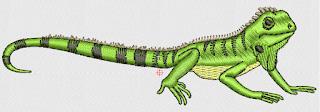 iguana en formato para bordado