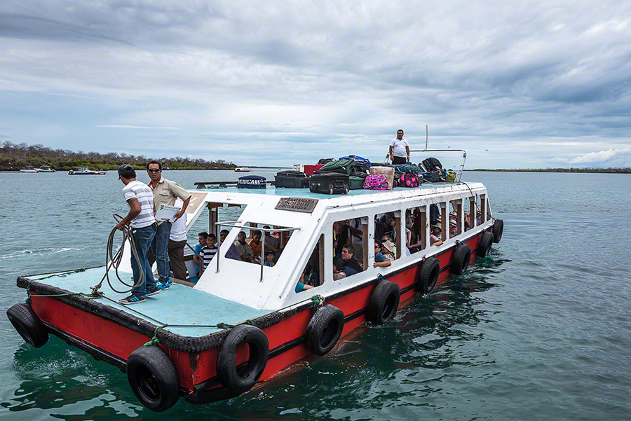 Vacationtraveladventure santa cruz island galapagos for Santa cruz fishing spots