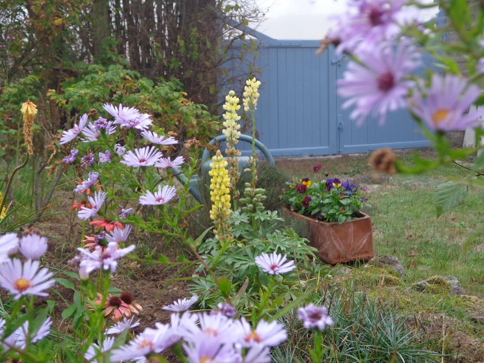 Florecouleurs - Le petit jardin quilt pattern calais ...