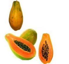 fruit papaya