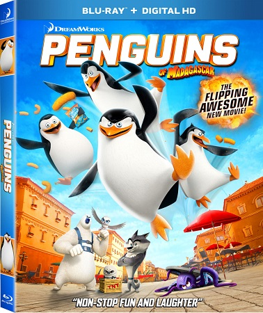 Poster Of Penguins of Madagascar 2014 English 300MB BRRip 480p Free Download Watch Online