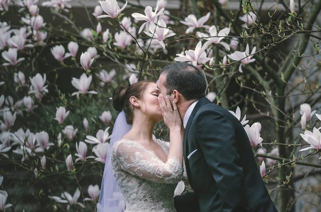 magnolie ślub