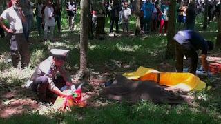 Polisi melakukan identifikasi mayat wanita di kebun karet Cipeundeuy, Subang. - Foto/iNews