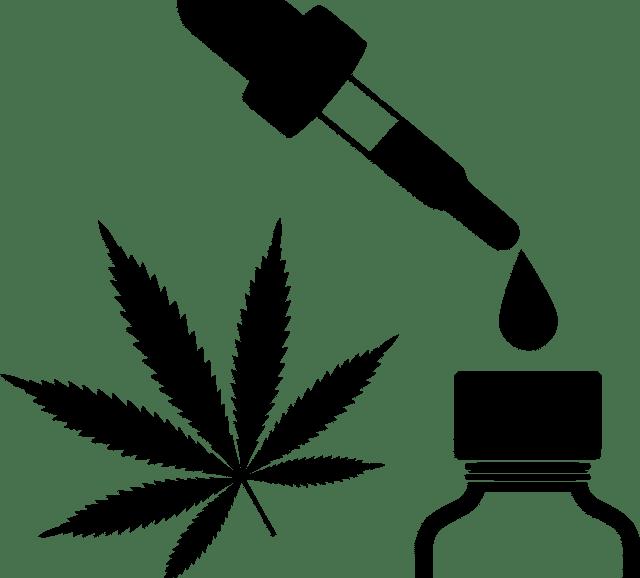 health benefits cbd oil hemp thc popularity Cannabidiol