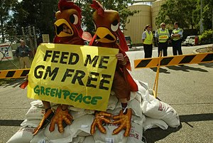 Photo of people dressed as chickens protest GM animal feed