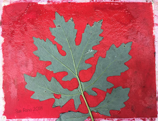 Solarfast prints_Sue Reno_Image 5
