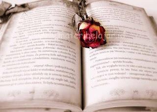 Cerpen, Cerita Pendek, Buku, Contoh Cerpen