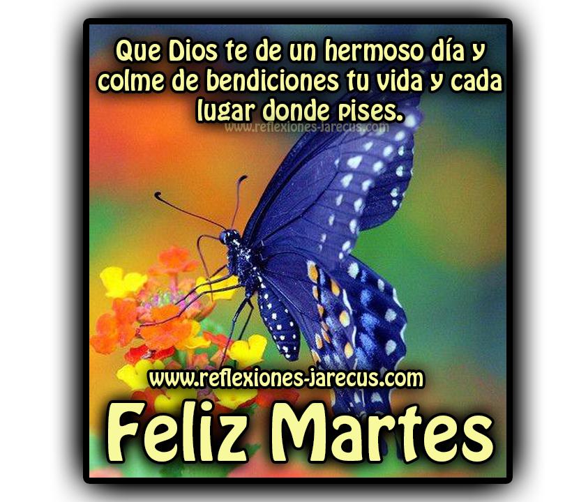 Feliz martes✅Que Dios te de un hermoso día y colme de bendiciones tu vida y cada lugar donde pises.