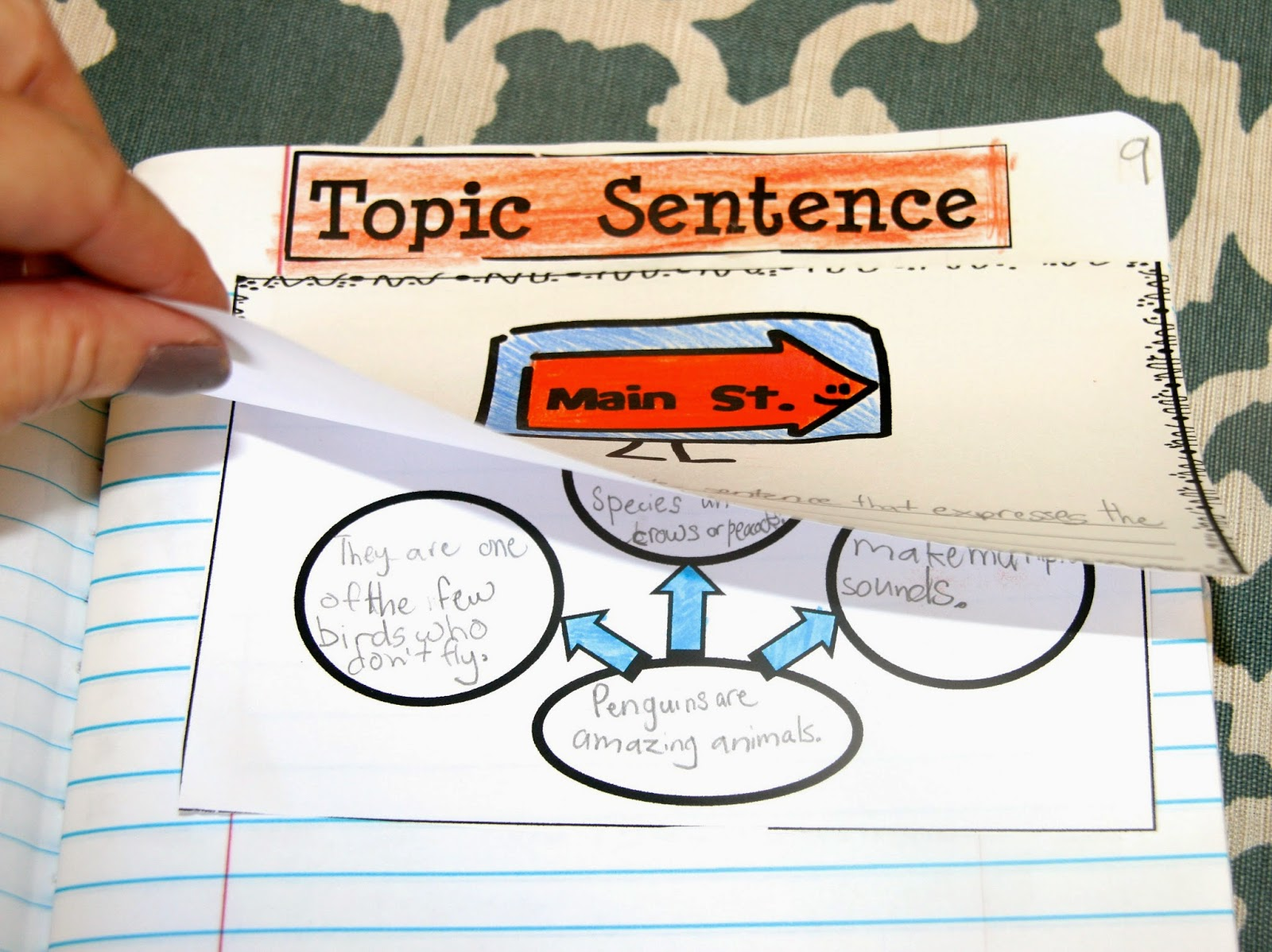 teach topic sentences to help students understand paragraph parts