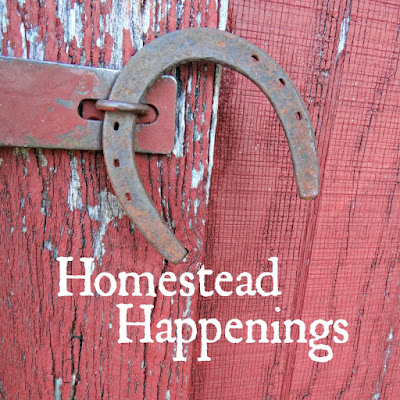 Homestead Happenings #3