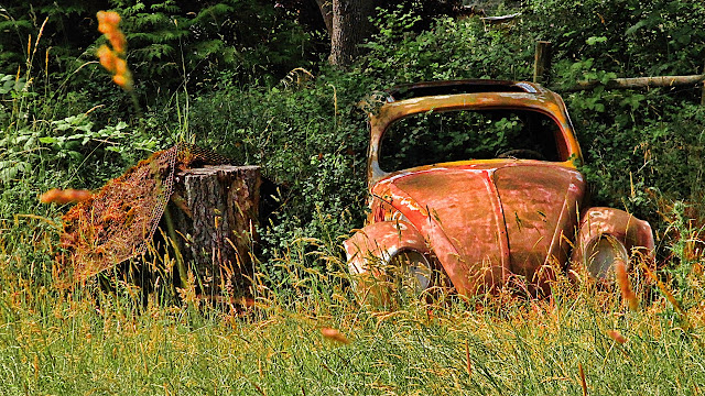 Rusted out Love Bug in Metchosin, BC...