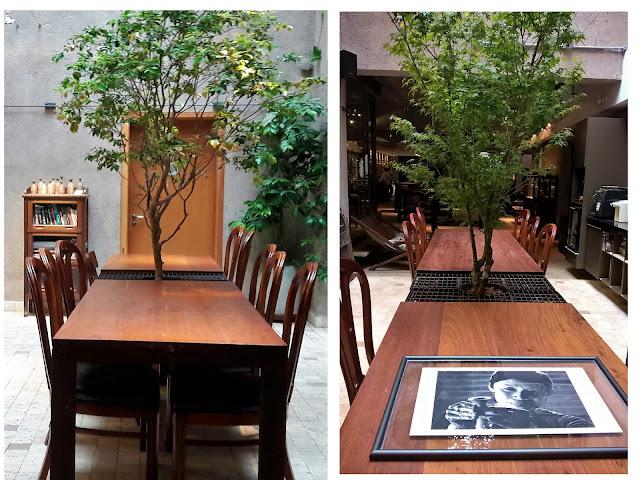 jardim japonês, plantas para jardim japonês, paisagismo atelier hideko honma