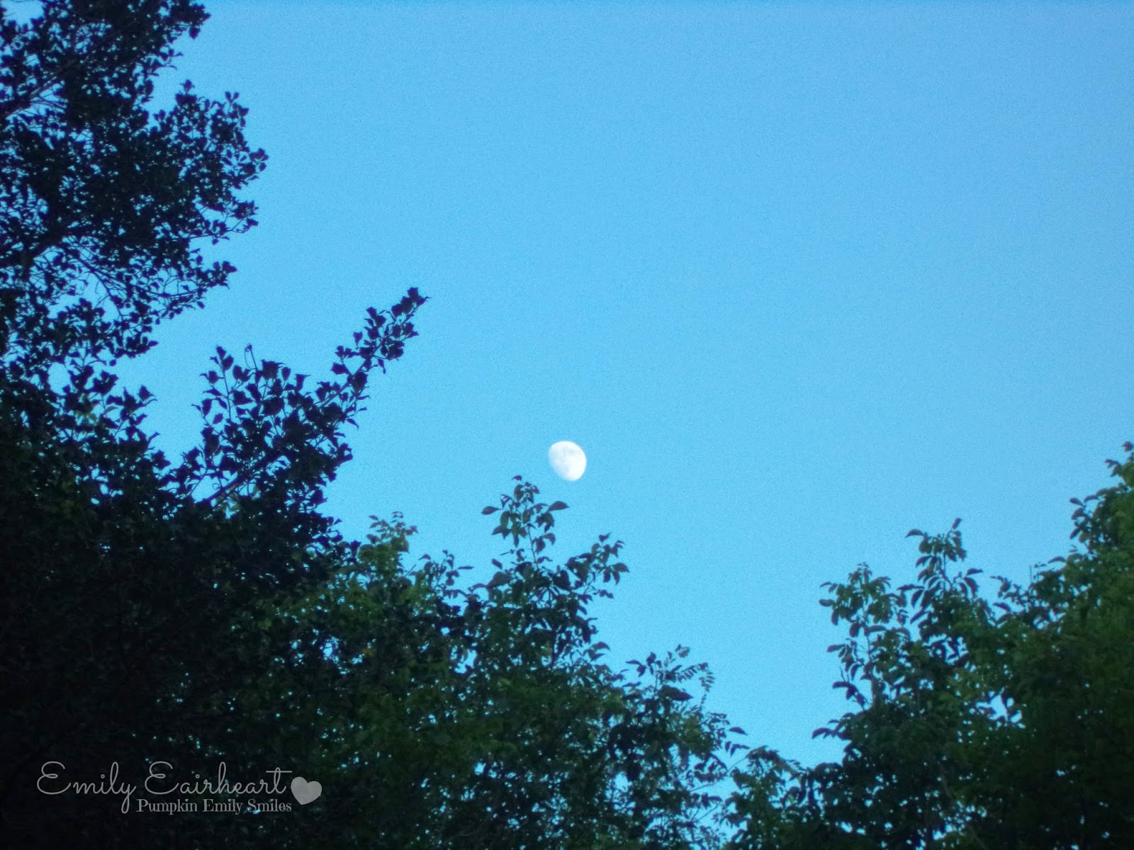 Moon in a bright blue sky.