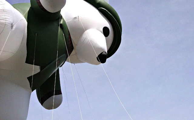 Bear ballon at Dublin's St. Patrick's Day Parade #IrishisanAttitude #SoDublin