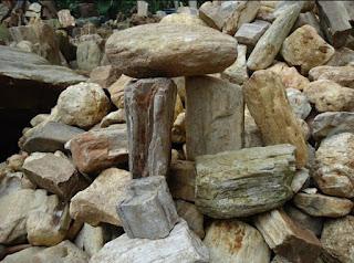 Ini Dia, 6 Jenis Batu Yang Cocok Untuk Aquascape Beserta Harganya