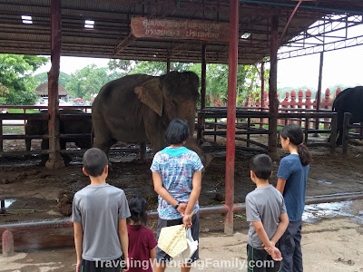 Riding elephants with children in Thailand