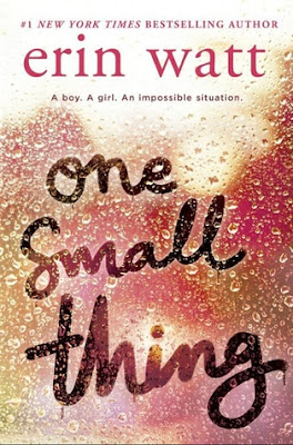 https://www.goodreads.com/book/show/35750273-one-small-thing