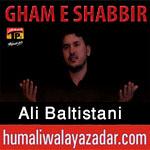 shiahd.blogspot.com/2017/10/ali-baltistani-nohay-2018.html