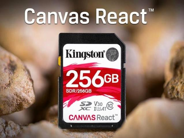 Kingston Canvas React 256 GB SD Card, Kingston, Canvas, React, 256 GB, SD Card, Kingston Canvas, 256 GB SD Card,