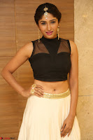 Roshni Prakash in a Sleeveless Crop Top and Long Cream Ethnic Skirt 121.JPG