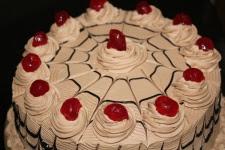 Metamora Herald cake white frosting