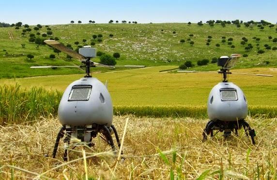 Steadicopter.jpg (572×372)