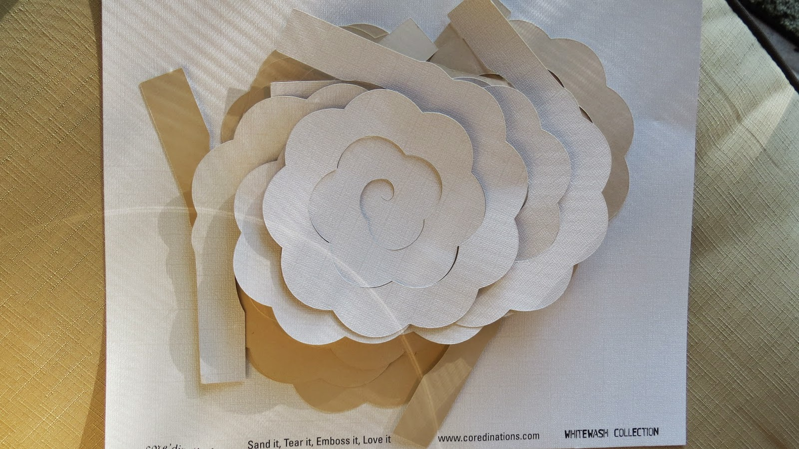 Coredinations, Whitewash, Texture of wood rose made of paper