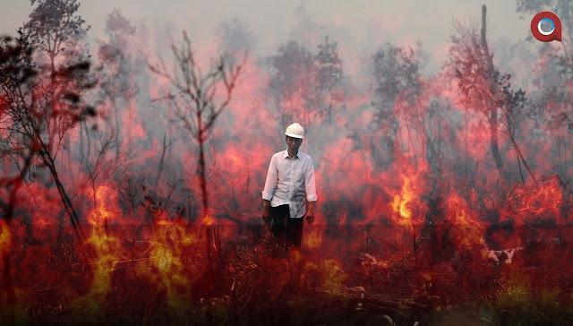 Bantah Jokowi, Greenpeace: Kebakaran Hutan Terus Terjadi Setiap Tahun