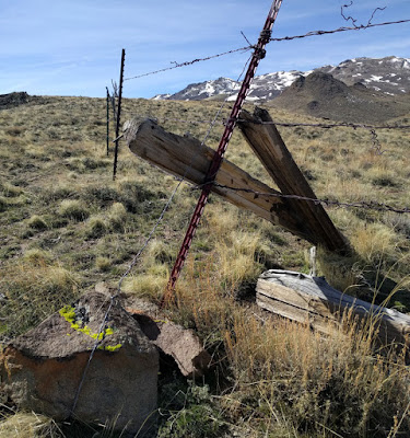 Owyhee Mountains fence in bad condition