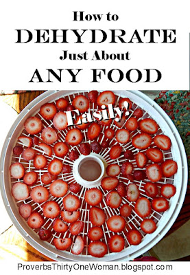 dehydrating food, food preservation
