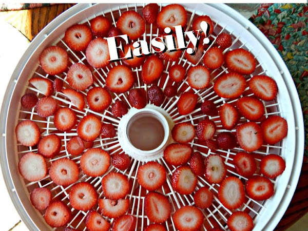 How to Dehydrate Just About Any Food - Easily!