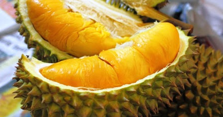 • 085.643.998.119 Bibit Durian Musang King