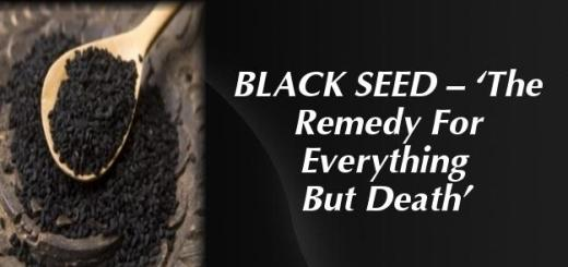 Kezzie's Konfections: The Amazing Benefits Of Black Seed Oil: A ...