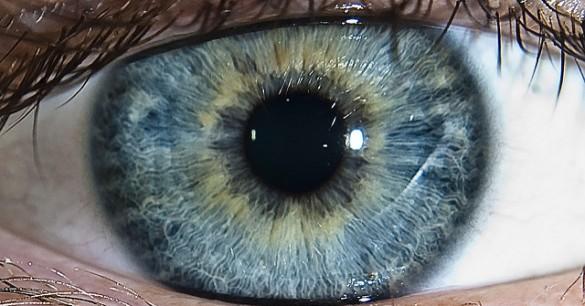 Mata Bionik, Solusi Untuk Para Tunanetra