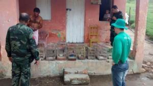 Mata Grande: Fiscais do IMA devolvem à natureza pássaros apreendidos