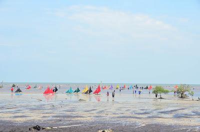 Pantai Tanjung Senekip Teluk Pambang Wisata Bengkalis