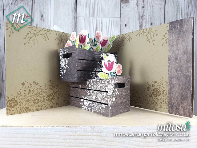 Stampin Up Wood Words Crate Bundle Mitosu Crafts Pop Up Card Order Stampinup UK Online Shop 3