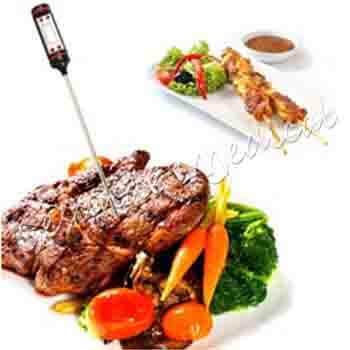jual termometer makanan