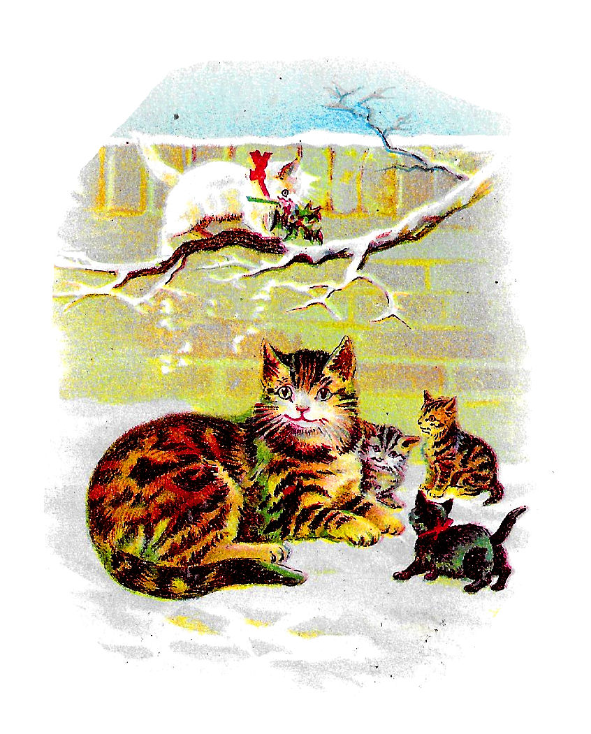 Antique Images Vintage Cat Printable Cards Greetings Christmas