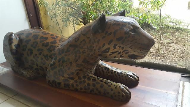 Museu da Floresta da Tijuca