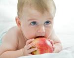 Baby-led weaning: ¿cuándo empezar la alimentación complementaria del bebé? Requisitos.