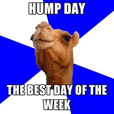 Happy Hump Day Graphics